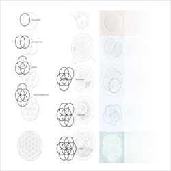 Cocaine 80s The Flower of Life Back Cover