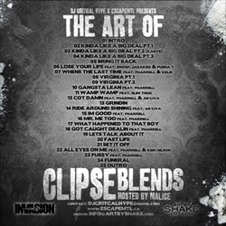 DJ Critical Hype The Art of Clipse Blends Back Cover