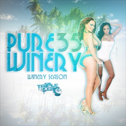 DJ Triple Exe Pure Winery 35 Front Cover