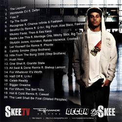DJ Skee & Evidence The Layover Back Cover