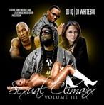 DJ IQ & DJ Whiteboi Sexual Climaxx Pt. 3