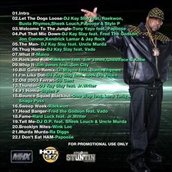 DJ Kay Slay The Soul Controller Back Cover