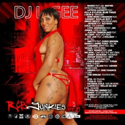 DJ L-Gee R&B Junkies Pt. 8 Front Cover