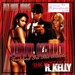 Playful Gestures: The Best Of R. Kelly Thumbnail