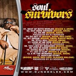 DJ Noodles Biggie & Akon 'Soul Survivors' Back Cover