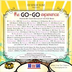 DJ Singh Slim Go-Go Experience Back Cover