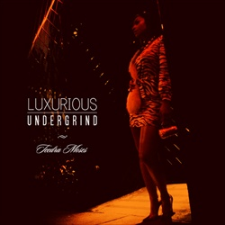 Teedra Moses Luxurious Undergrind Front Cover