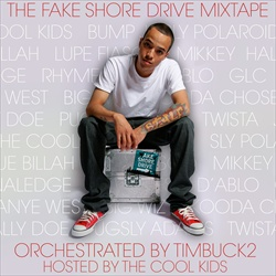 The Fake Shore Drive Mixtape Thumbnail