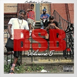 BSB Vol. 5 Thumbnail